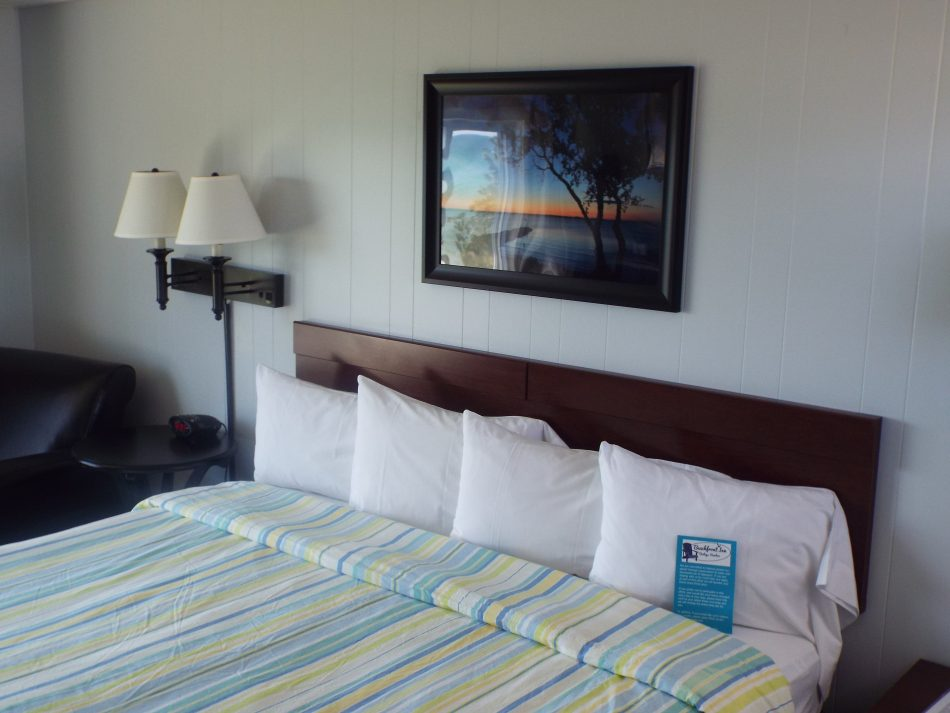 Room 208 one king bed